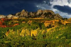 Keblerpas in de herfst Stock Foto