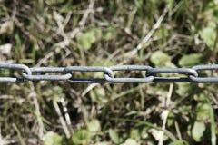 Kedja med oskarp gräsbakgrund kedjan är en seriell enhetsnolla arkivfoton