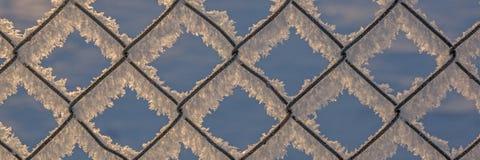 Kedja-sammanlänkning staket med snö, vinterbakgrund Royaltyfria Bilder