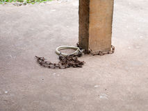 Kedjad fast hundhalsband Royaltyfri Fotografi
