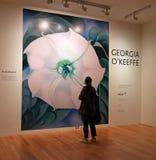 Keeffe för Georgia nolla-` på SEDAN Royaltyfri Bild