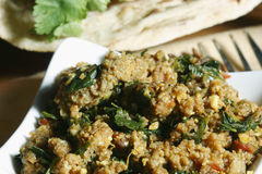 Keema methi - A hyderabadi dish Royalty Free Stock Images