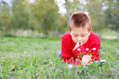 Keen on reading. Boy keen on reading laying down in autumn park grass stock photo