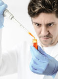 Keen scientist pipettes orange sample. Keen scientist with brown eyes in protective wear pipettes orange sample, Shallow DOF, focus on the pipette, drop, tube Stock Image