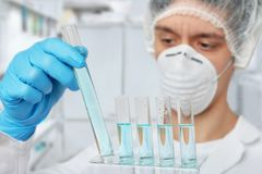 Keen scientist in protective wear with liquid samples. Keen scientist in protective wear works with liquid samples. Shallow DOF, focus on the tubes and gloved royalty free stock photography
