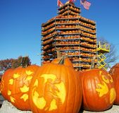 Keene Pumpkin Festival. In New Hampshire stock images
