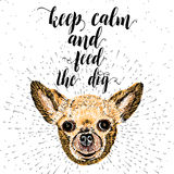Keep calm and feed the dog. Sign with cute smiling but starving dog. Motivational lettering for dog adoption. Inscription for dog lovers. Inspirational Stock Photos