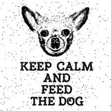 Keep calm and feed the dog. Sign with cute smiling but starving dog. Motivational lettering for dog adoption. Inscription for dog lovers. Inspirational Stock Photography