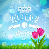 Keep calm it's spring -  spring design Stock Photo