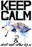 Keep Calm.  Seagull watercolorr illustration. Royalty Free Stock Photos
