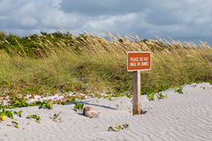 Keep off dunes sign in Florida Royalty Free Stock Images