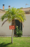Keep off the Grass Sign. A keep off the grass sign, in a tropical garden, under a miniature palm tree Royalty Free Stock Photo