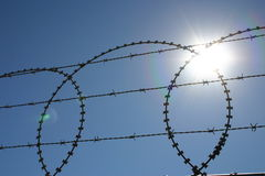 Keep out. Razor wire with sun behind Royalty Free Stock Photos