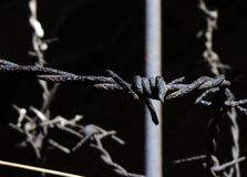 Keep out. Barb wire on the household Stock Photography