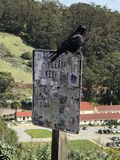 Keep out. A Crow on the keep out sign royalty free stock photography