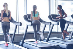Keep on running!. Rear view of young beautiful women with perfect bodies looking at each other with smile while running on treadmill at gym Stock Photography
