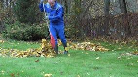 Keeper man tidying leaves in garden. 4K. Keeper man tidying leaves in garden. Preparing compost in autumn time. Static shot. 4K stock video