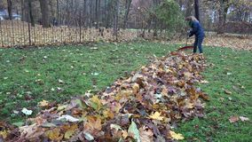 Keeper woman tidying leaves in garden backyard. 4K. Keeper woman tidying leaves in garden backyard. Huge pile of raked leaves. Preparing compost in autumn time stock video