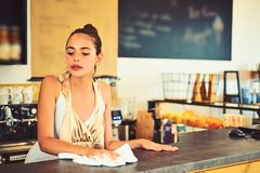 Keeping everything clean. Pretty woman stand behind cafe counter. Cute bartender or bar keeper. Barista clean counter stock images