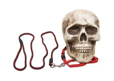 Keeping fears at bay. As shown by a skull on a leash - path included royalty free stock photography