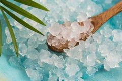 Kefir νερού σιτάρια στοκ εικόνες
