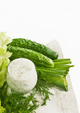 Kefir cucumber and salad leaves Stock Photos
