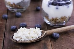 Kefir Grains Blueberries and Yogurt Chia Parfait. Kefir grains in wooden spoon in front of cups of Kefir Yogurt Parfaits. Kefir is one of the top health foods Stock Photography