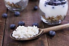 Kefir Grains Blueberries and Yogurt Chia Parfait. Kefir grains in wooden spoon in front of cups of Kefir Yogurt Parfaits. Kefir is one of the top health foods Stock Photos