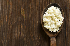 Kefir grains Stock Photos
