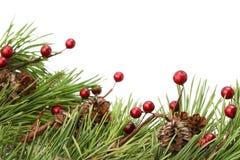 Kegel-und Beere Weihnachtsrand Lizenzfreie Stockfotografie