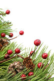 Kegel-und Beere Weihnachtsrand Stockfoto