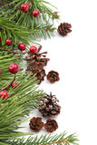 Kegel-und Beere Weihnachtsrand Stockbilder