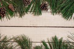 Kegel und Fichtenzweig auf weißem hölzernem Brett Stockbilder
