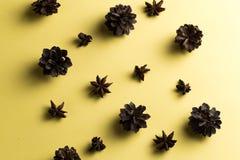 Kegels, de ingrediënten van de sterrenanijsplant voor drank royalty-vrije stock afbeeldingen