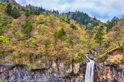 Kegon cade, una di più alte cascate nel Giappone Fotografia Stock