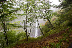 Kegon Falls in the mist,Nikko National Park near the city of Nikko,Tochigi Japan. Royalty Free Stock Images