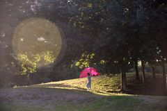 Kei chan захода солнца осени стоковые фотографии rf