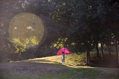 Kei chan do por do sol do outono fotos de stock royalty free