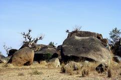 Keien in het landschap van de Savanne royalty-vrije stock foto