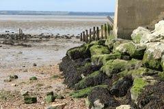 Keien op Alhallow-Strand in Kent Royalty-vrije Stock Fotografie