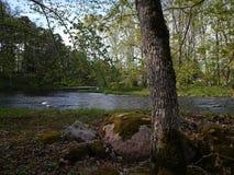 Keila-Fluss Lizenzfreies Stockfoto