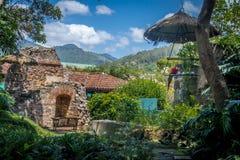 Keilschwanzsittich in den Kolonialklosterruinen mit Bergen Lizenzfreie Stockfotos
