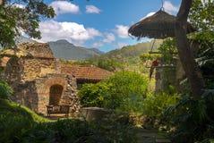 Keilschwanzsittich in den Kolonialklosterruinen mit Bergen Stockbilder