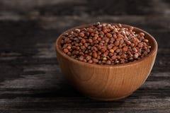 Keimungs-Samen in einer hölzernen Schüssel Lizenzfreies Stockfoto