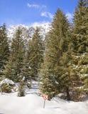 Kein übertretendes Zeichen auf hölzernem Pfosten im Schnee Lizenzfreie Stockfotografie
