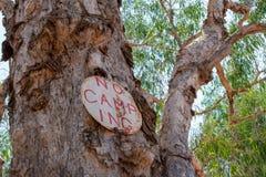 Kein kampierendes Zeichen auf einem Papierbarkenbaum in Australien stockfotos