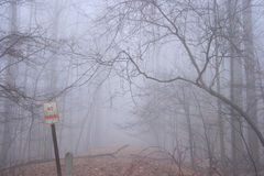 Kein Parken kennzeichnet innen Wald       Stockbild