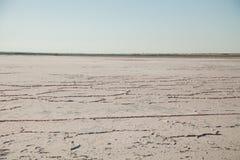 Kein trockenes lebloses Land der Wasserdürre leblos stockfoto