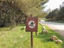 Keine erlaubten Feuer unterzeichnen herein einen Kiefernwald Lizenzfreie Stockbilder
