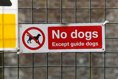 Keine Hunde Lizenzfreie Stockfotos